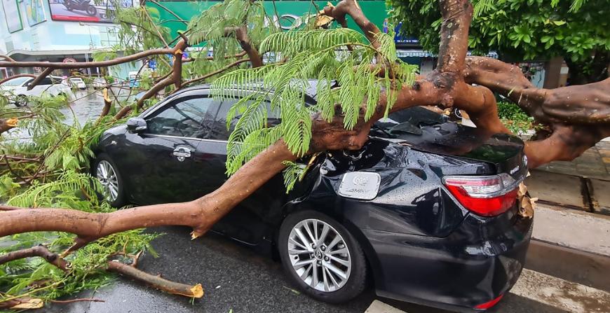 lưu ý đậu xe mùa mưa